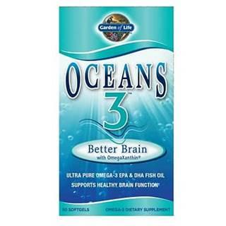 Garden of Life Oceans 3 Better Brain Omega-3 - Podpora činnosti mozku - 90 tobolek