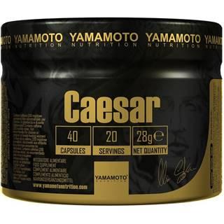 Caesar (Super kombinácia 3 adaptogénov) -  40 kaps.