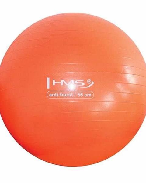 Gymnastický míč HMS YB02 55 cm oranžový