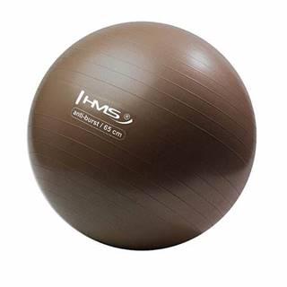 Gymnastický míč  YM02 65 cm bronzový