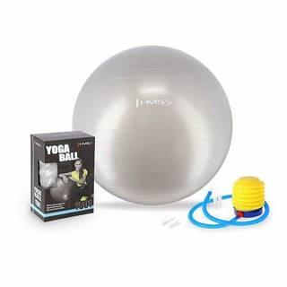 Gymnastický míč  YB01 65 cm, šedý