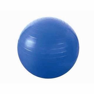 Gymnastický míč  YB01 55 cm, modrý